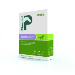 Plusvital - Recovery-7