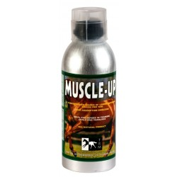 TRM - Muscle Up - 960 ml