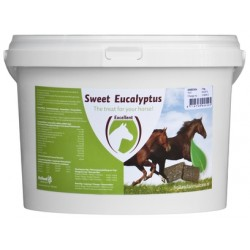 Excellent - Sweet Eukalyptus Blocks - 3 kg