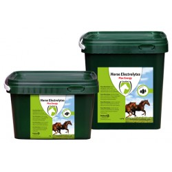 Excellent - Horse Electrolyte Pulver